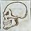 Thumbnail: Skull Skeleton Foundation Paper Piecing Pattern