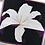 Thumbnail: Stargazer Lily Flower Foundation Paper Piecing Pattern