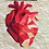 Thumbnail: Geometric Heart Organ Foundation Paper Piecing