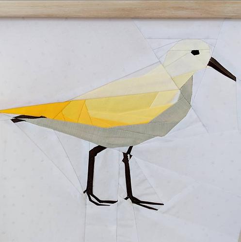 Sand Piper Seahorse Bird Foundation Paper Piecing Pattern
