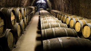 Wine Image 032.jpg