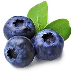 Blueberry Bergamais