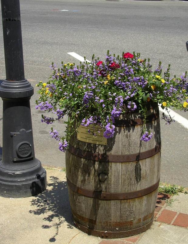 flower_barrel.jpg