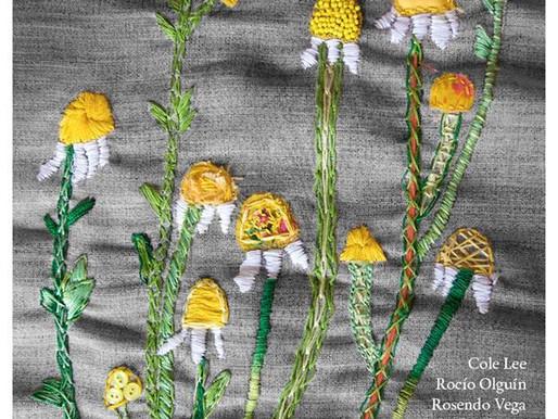 Herbarios medicinales bordados – Exposición colectiva