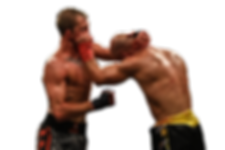 Artem Lobov vs Jason Knight19.png