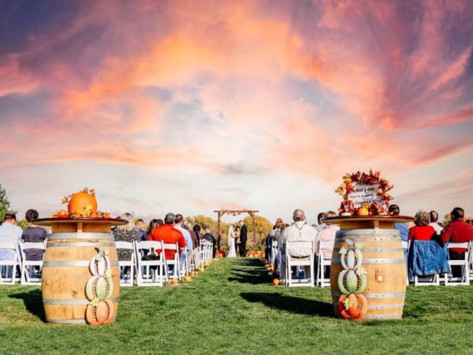 Love the Outdoors?  This Alexandria Resort-Style Venue is Your One Stop Shop for the Perfect Wedding