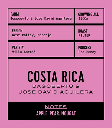 COSTA RICA DAGOBERTO