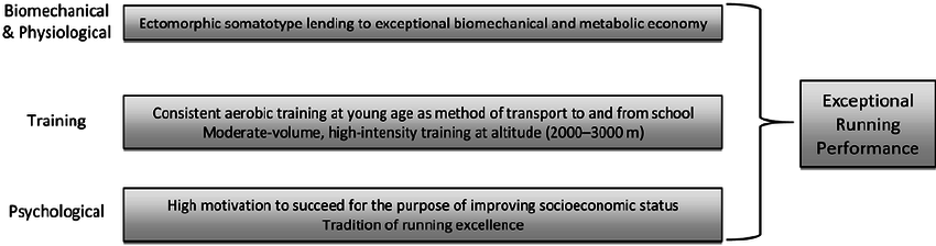 """""""It would be naive to think that there is a single prominent genetic, physiological, or psychological factor that explains the extraordinary success of the Kenyan and Ethiopian distance runners."""" - Authors of the paper."""