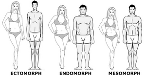 Your body type determines how much muscle you can grow or lose.
