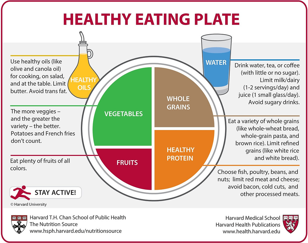 A balanced meal consists of a set portion of each food group. Photo credit: Harvard University