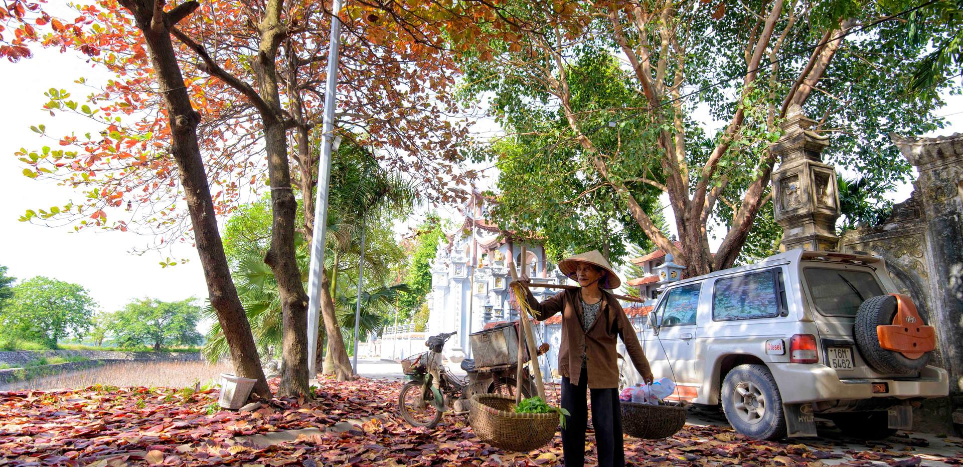 làng gôm kim lan