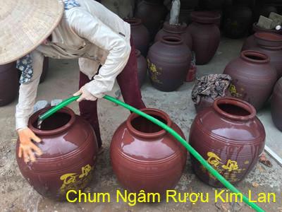 Chum Sành Ngâm Rượu | Mua Chum Sành Ở Hà Nội - Gốm Sứ Kim Lan Hà Nội