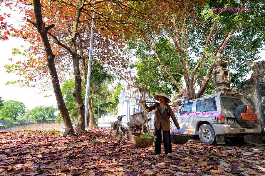 làng gốm cổ kim lan