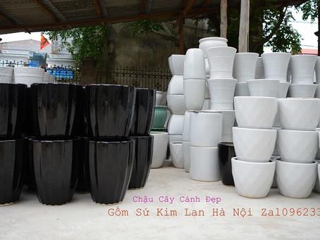 Review 25 xưởng sản xuất chậu cây cảnh đẹp nhất làng gốm cổ Kim Lan Hà Nội