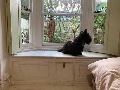 built-in window seat, dog seat, storage box