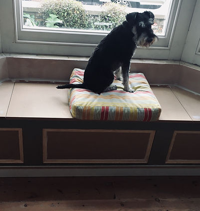 built-in window seat, dog seat, with storage box