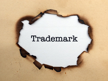 Twitter's New Trademark Guidelines: Why Trademark Guidelines are Important