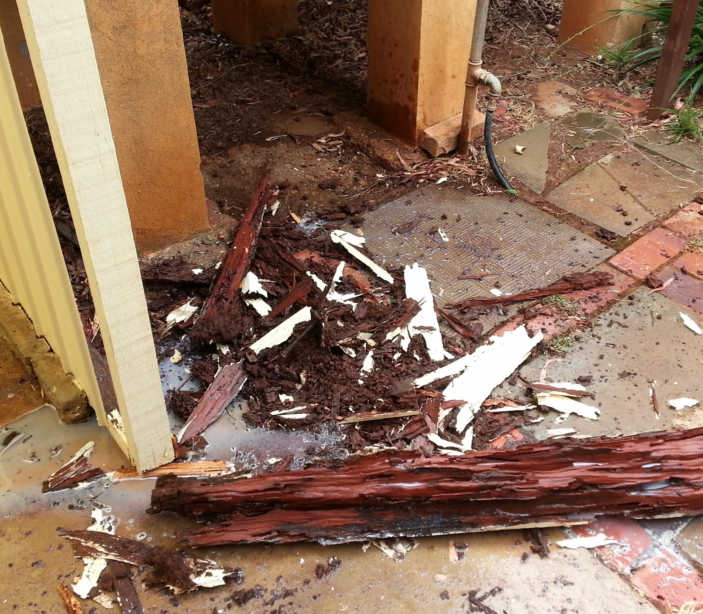 termites- verandha post.