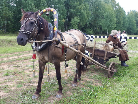 На Сибирском тракте интеграция спорта и культуры. Жители села и гости уже увидели многие активности,