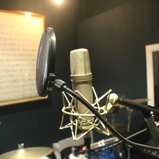 Neumann Vocal Mic