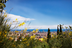 Barcelona-View from Park Guell