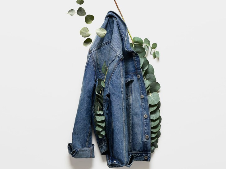 Jaqueta jeans e planta