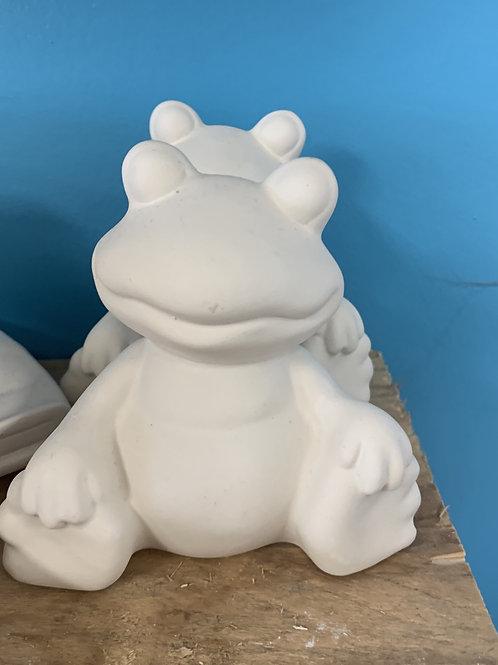 Frog - Take Home Kit