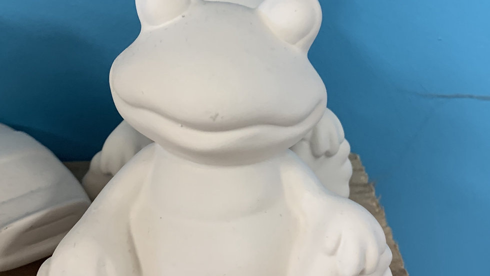 Frog Take Home Kit