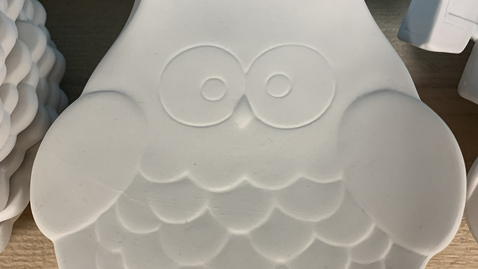 Owl Plate Take Home Kit