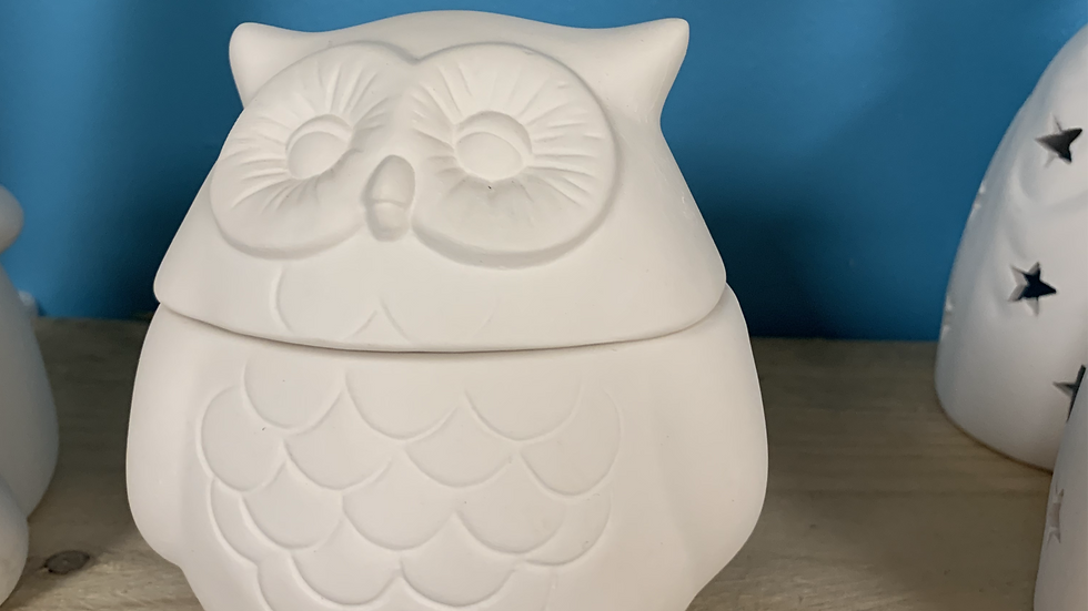 Owl Pot Take Home Kit
