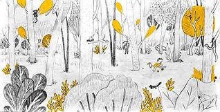 dibujo bosque.jpg