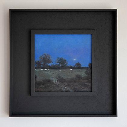 'Night Grazing'  Harman's Cross | 20cm x 20cm Oil on Gesso Board