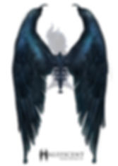 Maleficent_WingDetail_KP_v1.jpg