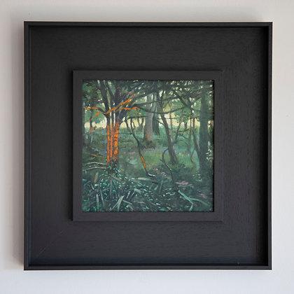 'Wood at Sundown' Kingston | 20cm x 20cm Oil on Gesso Board