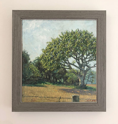 'Spring view at West Acre' part 1 | 25.5cm x 27.5cm Oil on Gesso Board (Framed)