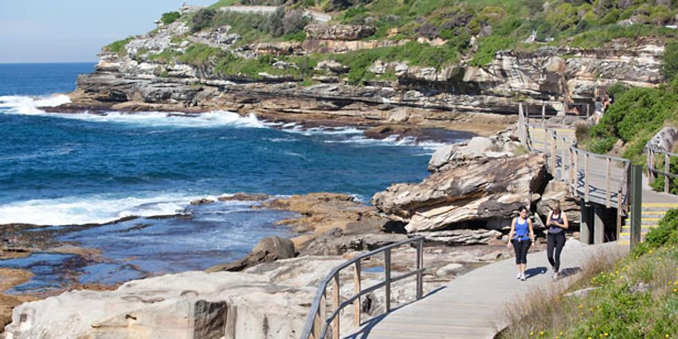 長周末 ANTRA Bondi - Coogee 海灘經典徒步游
