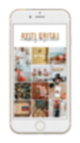 Ayiti Eritaj display.png
