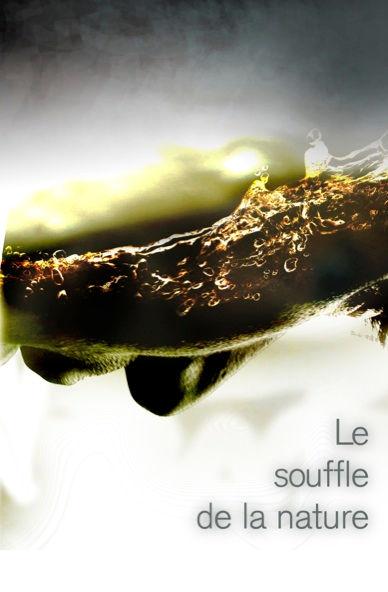 tiphaine-siovel-film-nature-breath.jpg