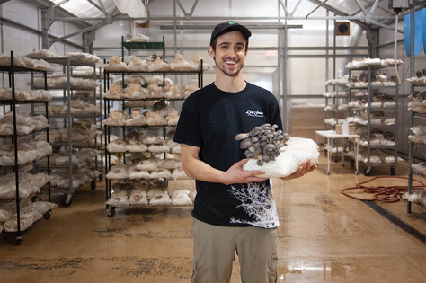 The Mushroom Mentality Discovering the Regenerative Mushroom Startup in Our Own Backyard