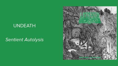 Undeath: Sentient Autolysis - Chaotic and Crisp