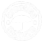 Creative nature  logo.png