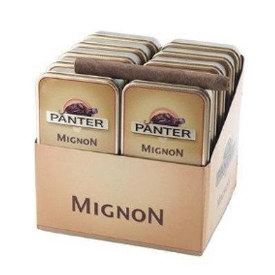 Panter Mignon x 10