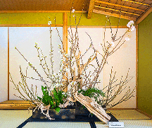 Kitajima3914-001(P)2.jpg