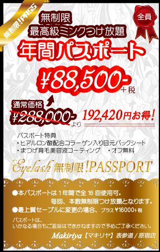 1年間で16回、本数無制限つけ放題コース通い放題!通常価格より19万円以上お得な¥88500!