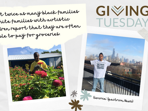 #GivingTuesday - Please Support UAS