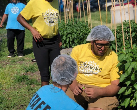 One Summer Chicago Students Come to the Farm
