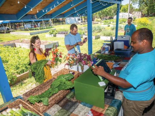 Growing Solutions Farm Featured in Illinois Farm Bureau Partners