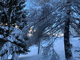 Les Mosses hiver 100 (2).jpg