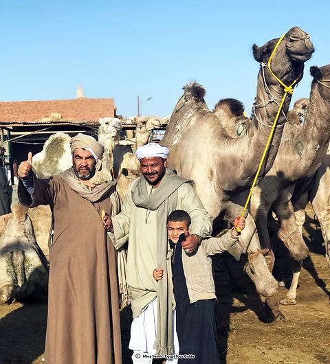 camel market 2.jpg