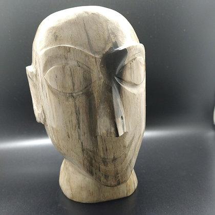 Versteende bamboe hoofd